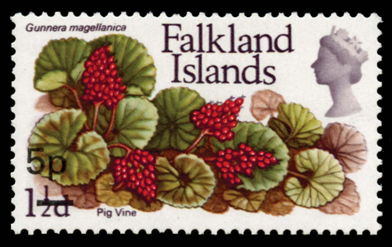 FALKLAND ISLANDS 1971  SG264a Mint