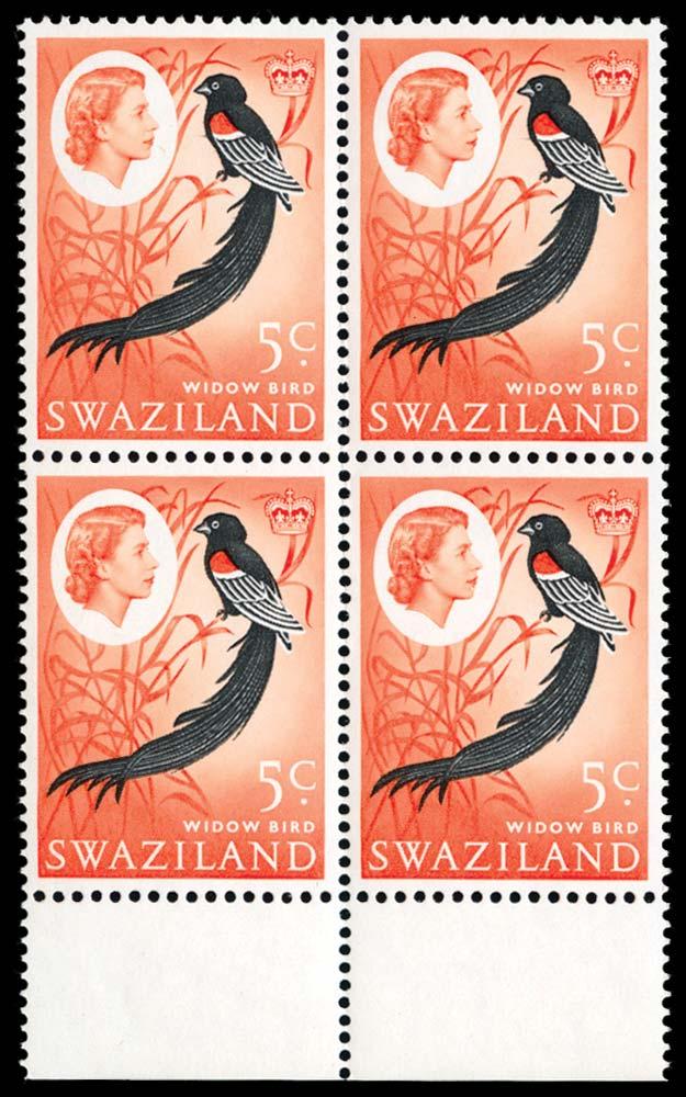SWAZILAND 1962  SG96w Mint