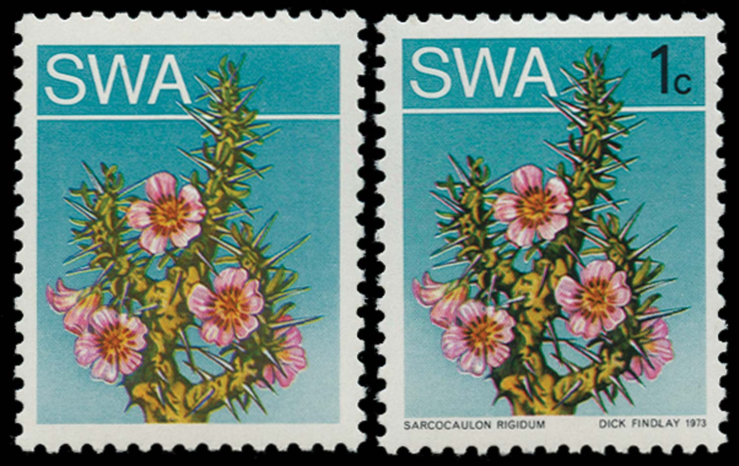 SOUTH WEST AFRICA 1973  SG241a Mint