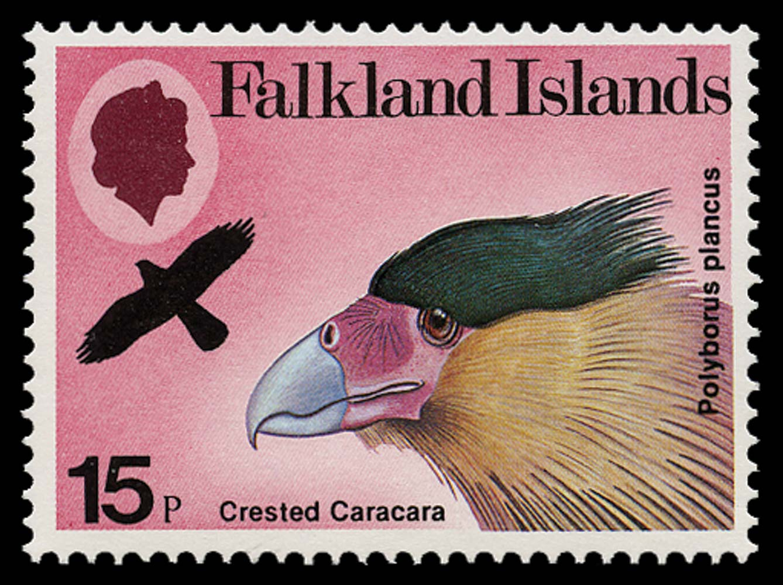 FALKLAND ISLANDS 1980  SG386w Mint