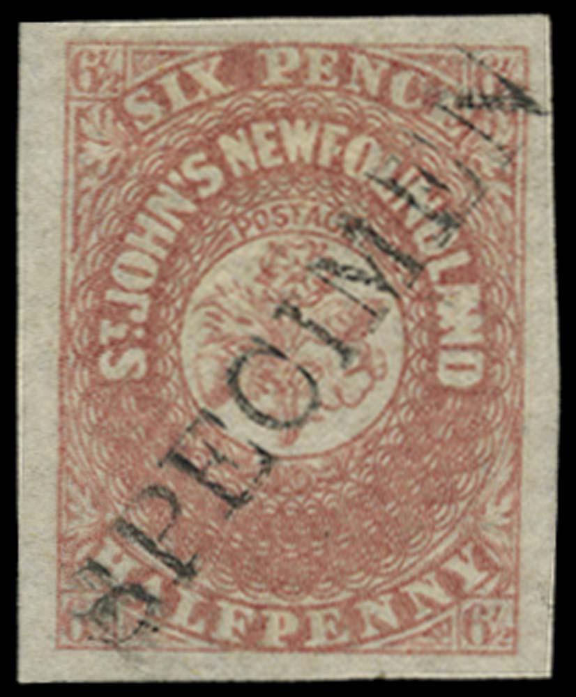 NEWFOUNDLAND 1862  SG21 Specimen