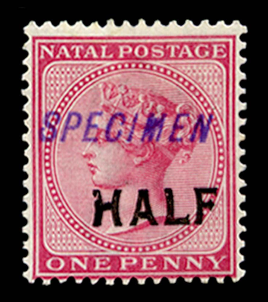NATAL 1895  SG125s Specimen