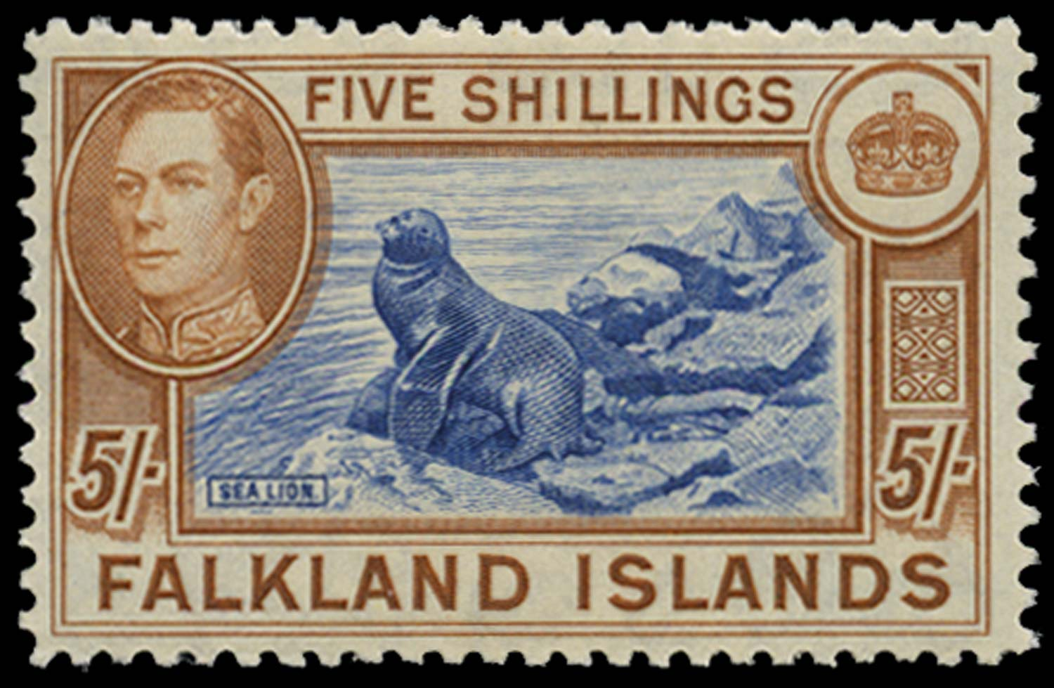 FALKLAND ISLANDS 1949  SG161d Mint 5s steel blue and buff-brown