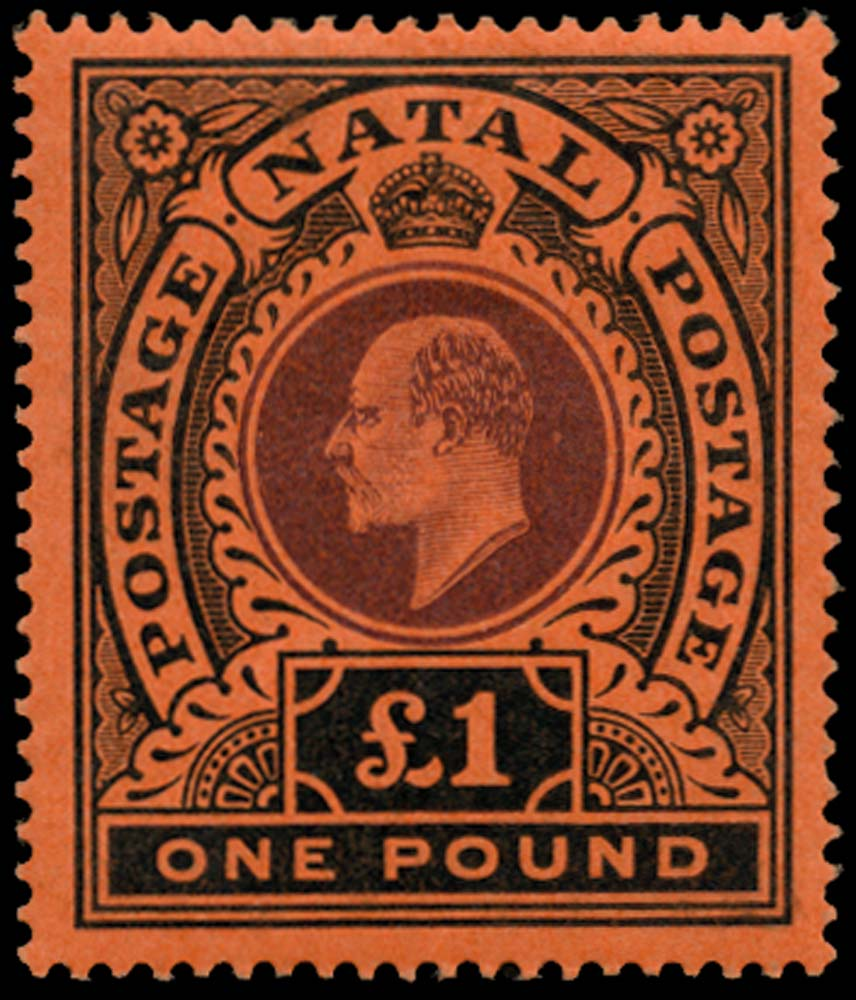 NATAL 1908  SG171 Mint £1 purple and black on red