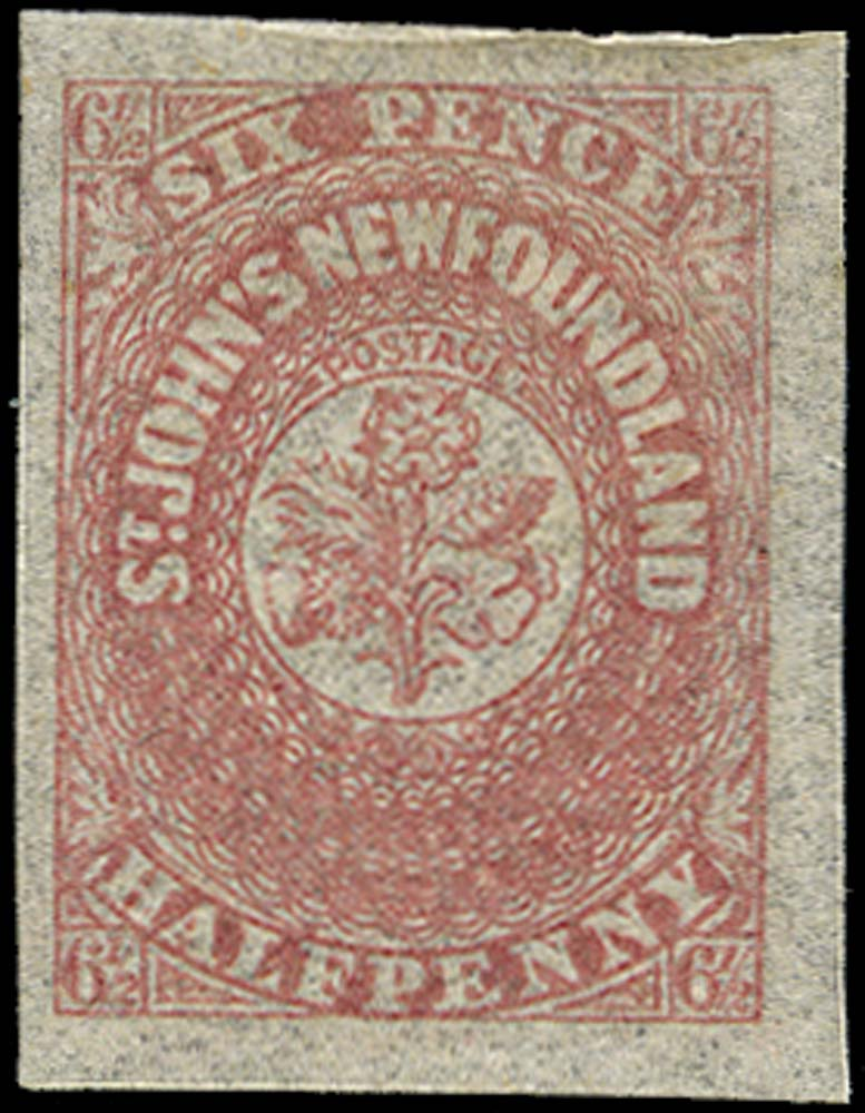NEWFOUNDLAND 1862  SG21 Mint 6½d rose-lake hand-made paper