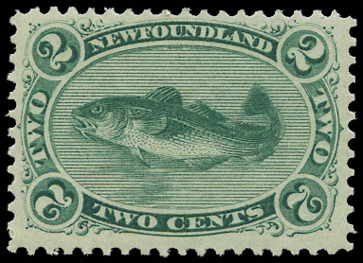 NEWFOUNDLAND 1865  SG25 Mint 2c yellowish green Atlantic Cod