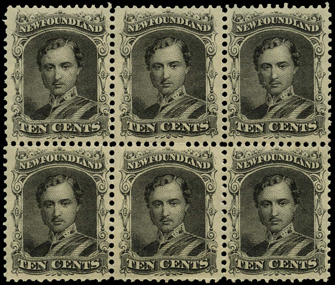 NEWFOUNDLAND 1865  SG27 Mint Prince Consort 10c black on thin yellowish paper
