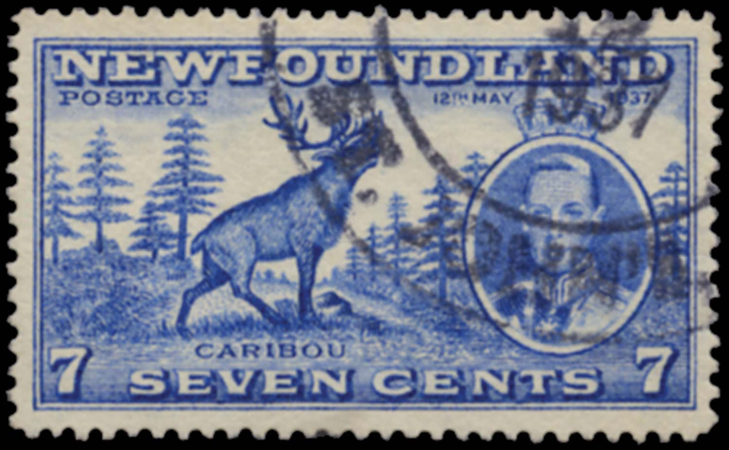 NEWFOUNDLAND 1937  SG259cb Used Coronation 7c perf 13½ Re-entry at right
