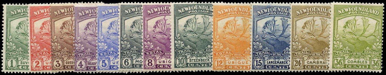 NEWFOUNDLAND 1919  SG130/41 Mint Newfoundland Contingent Caribou set of 12 to 36c
