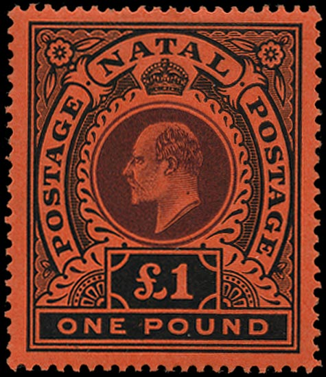 NATAL 1908  SG171 Mint KEVII £1 purple and black on red