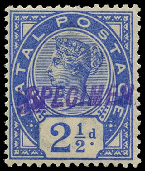 NATAL 1891  SG113s Specimen 2½d bright blue unmounted