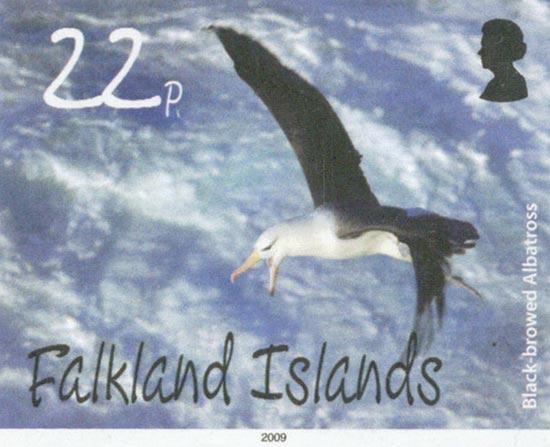 FALKLAND ISLANDS 2009  SG1140/3 unmounted