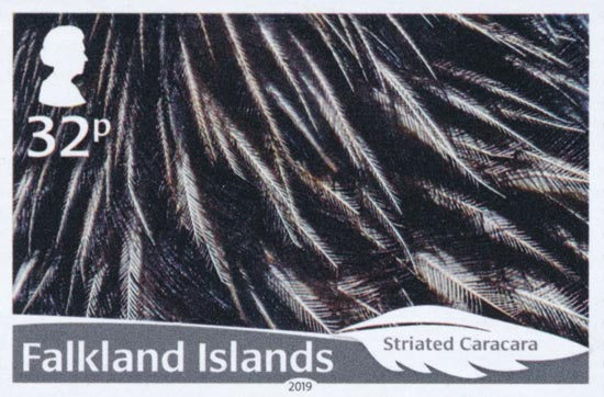FALKLAND ISLANDS 2019  SG1434/9 unmounted