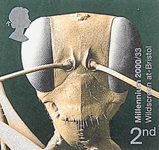 GB 2000  SG2162/5 unmounted mint