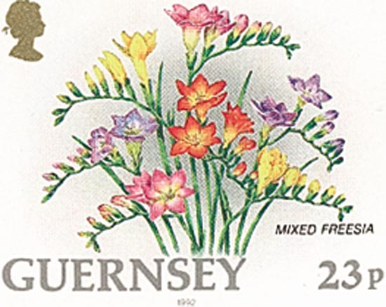 Guernsey 1992  SG574a unmounted mint