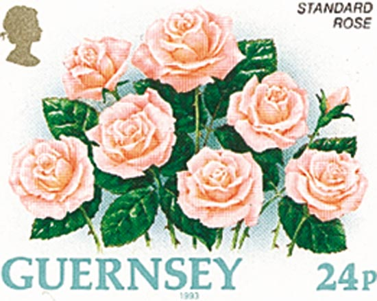 Guernsey 1993  SG575a unmounted mint