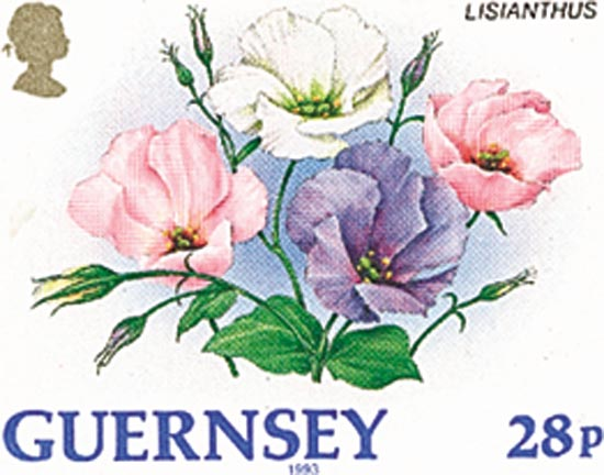 Guernsey 1993  SG577a unmounted mint