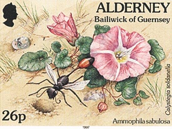 Alderney 1997  SGA72c unmounted mint