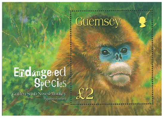Guernsey 2004  SGMS1016 unmounted mint