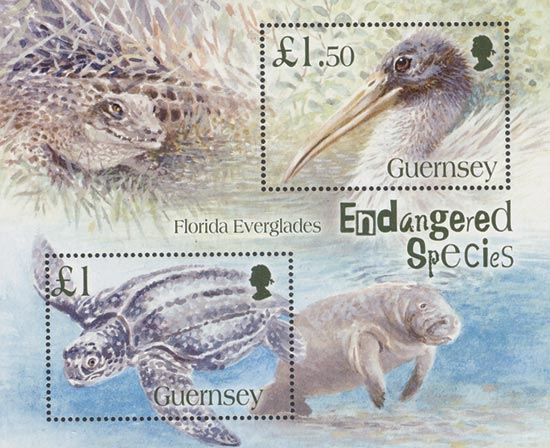 Guernsey 2006  SGMS1096 unmounted mint