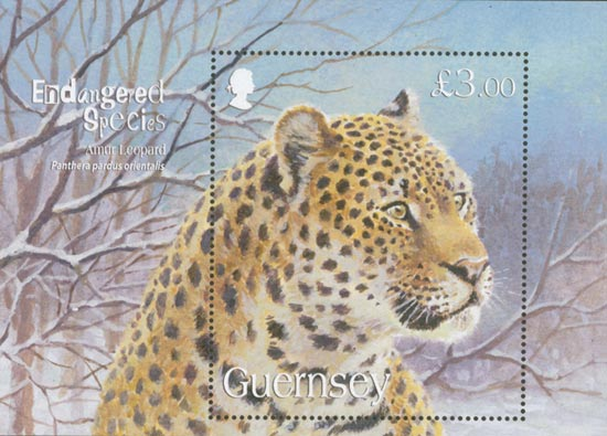 Guernsey 2009  SGMS1266 unmounted mint