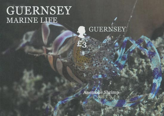 Guernsey 2014  SGMS1524 unmounted mint